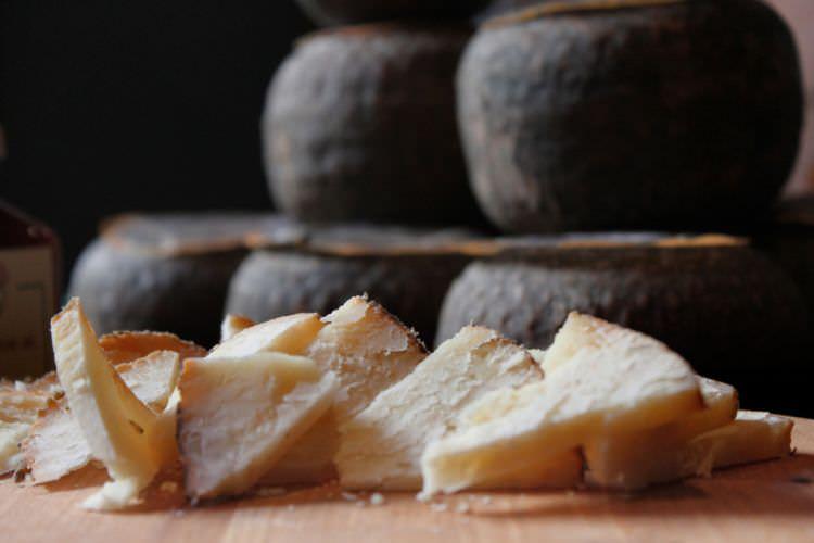 Toscanello cheese