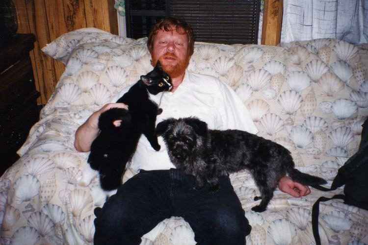 dog cat 2